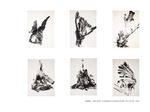 Oiseau - série noire 12 planches sur papier 92 x 65 cm 1992