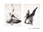 Oiseau / Série noire - détail de l'ensemble de la double page précédente 1992